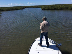 Redfish on Fly|Captain John Tarr