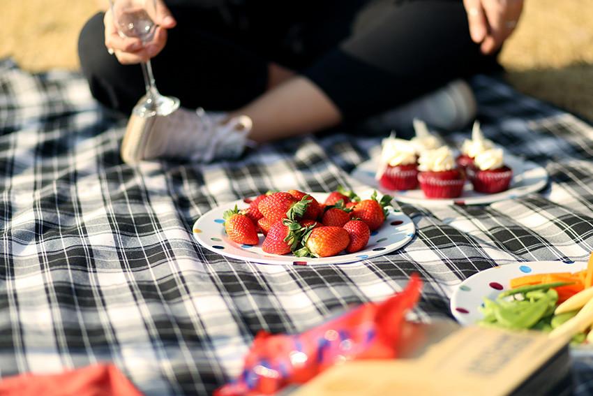 Jobest picnic