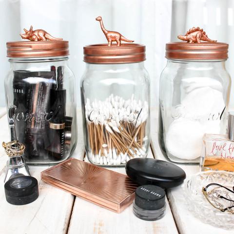 Dinosaur DIY Storage Jars