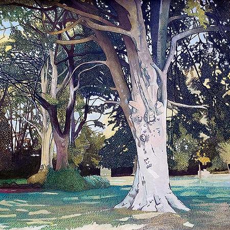 Lost-Meadow-Gallery-Cornwall-001.jpg