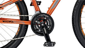 KTM_Wild_Speed_disc_växlar.jpg