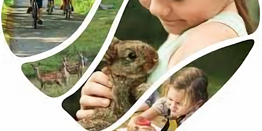 All About Owls - Greensand Country Festival event
