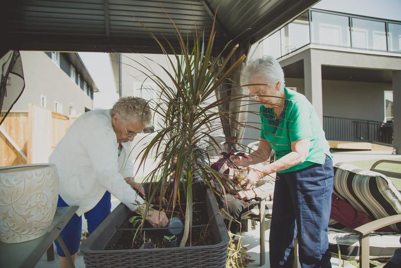 Warm 'n' Cozy - Gardening