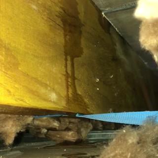 Loungeroom ceiling leak via roof