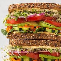 veggie_hummus_sandwich9.-1-500x500.jpg