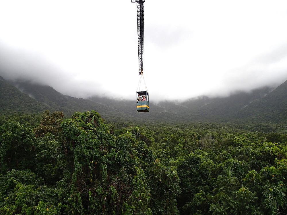 James Cook University Daintree Rainforest Oservatory