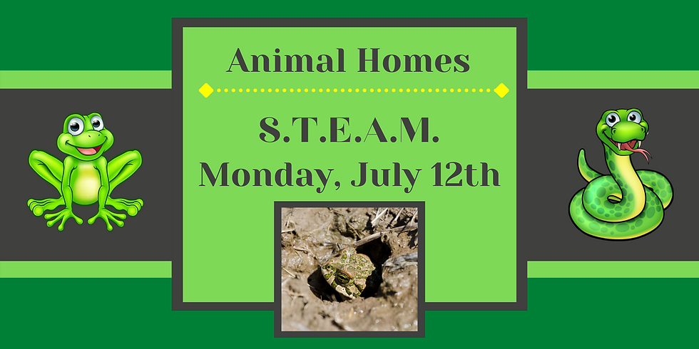 STEAM: Animal Homes