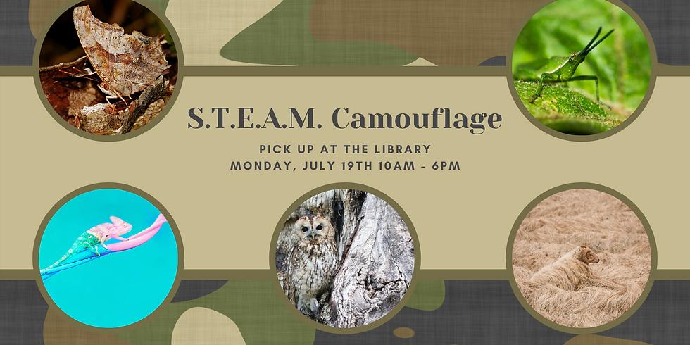 STEAM: Camouflage