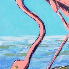Audubon-ish Flamingo