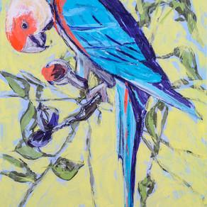 Audubon-ish Parrot