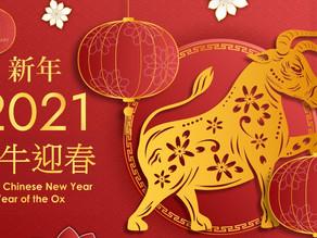恭喜發財!金牛迎春!Happy Chinese New Year!