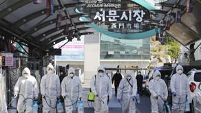 康泰取消3月15日前出發首爾旅行團