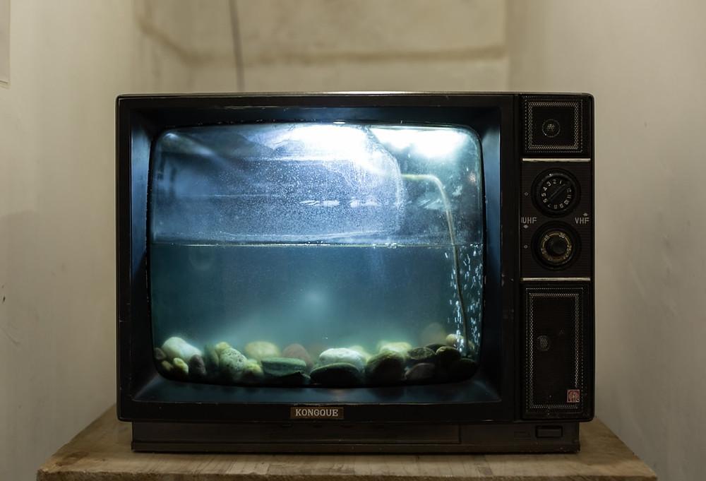 tvarium - cant afford a tv - the guiding voice - www.dguidingvoice.com