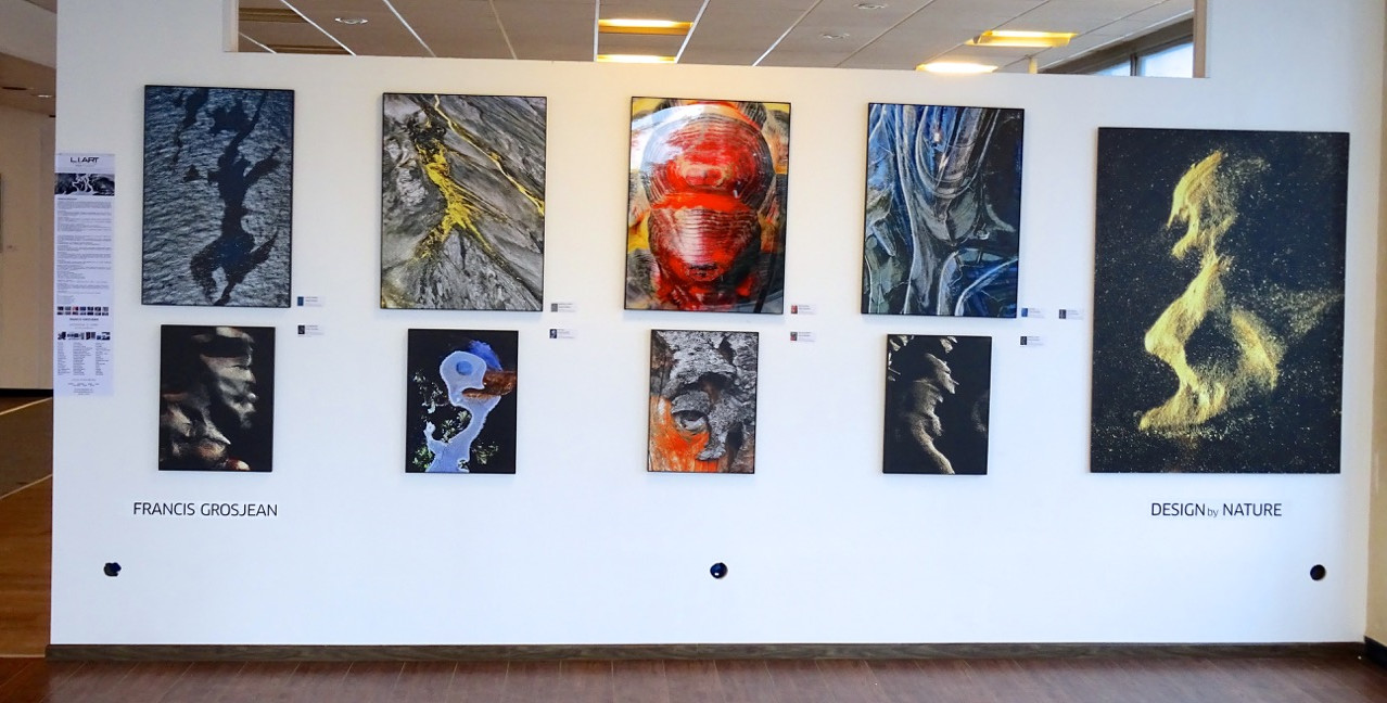 EXPO AULNAY - Frost4