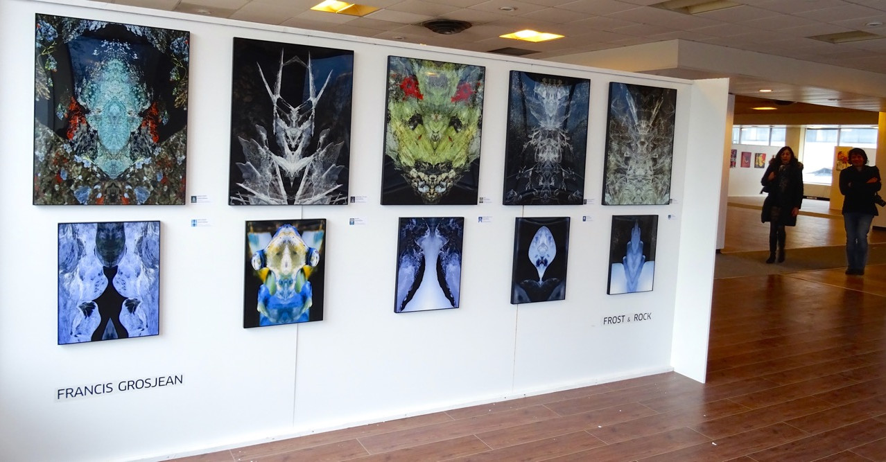 EXPO AULNAY - Frost3