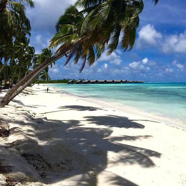 #anotherdayattheoffice #worldtour #Maldi