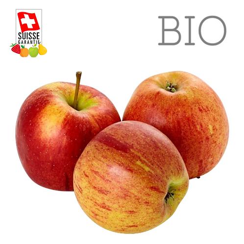 BIO Pommes Breadburn - 1 kg