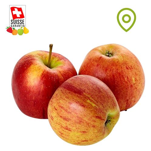 Pomme Braeburn - 1 kg