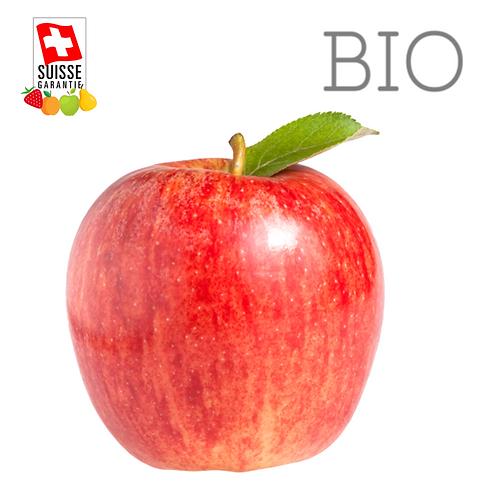 BIO - Pommes Gala - 1 kg