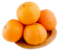 orange only-09.png
