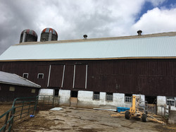 Waymar Jersey's Clement Farms