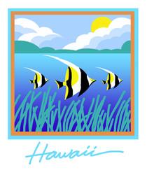 Hawaii tourist