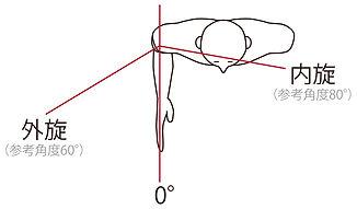 肩の内旋外旋