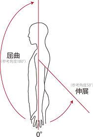 肩の伸展屈曲