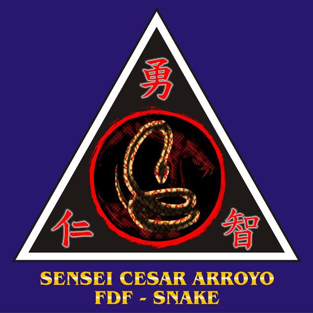 45 SENSEI CESAR ARROYO.jpg