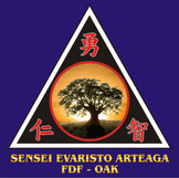 39 SENSEI EVARISTO ARTEAGA.jpg