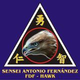 10_SENSEI_ANTONIO_FERNÁNDEZ.jpg