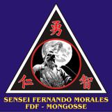14 SENSEI FERNANDO MORALES.jpg