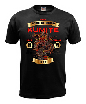 Kumite tshirt 2 shine.png
