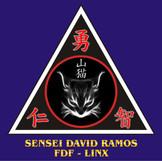 20 SENSEI DAVID RAMOS.jpg