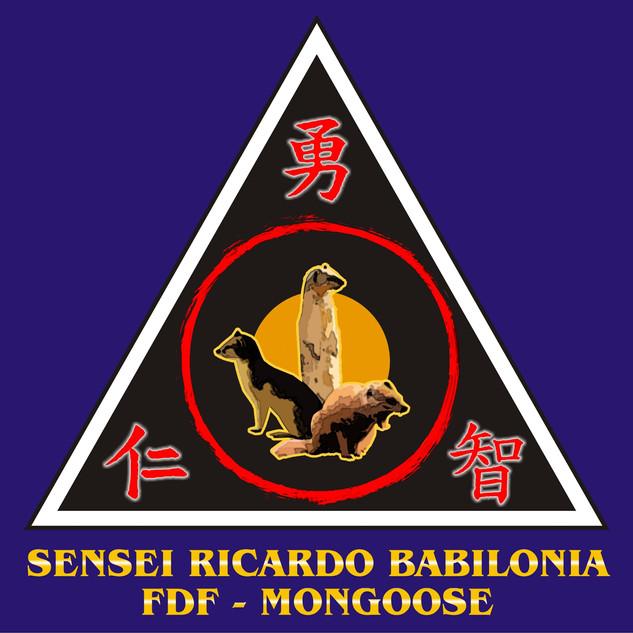 48 SENSEI RICARDO BABILONIA.jpg