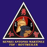 57_SENSEI_ANTONIO_MARTÍNEZ.jpg