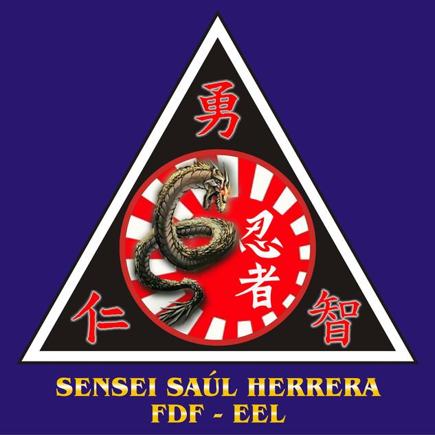 41_SENSEI_SAÚL_HERRERA.jpg