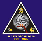 28 SENSEI OSCAR DAZA.jpg