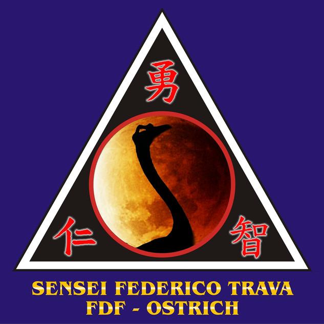 27 SENSEI FEDERICO TRAVA.jpg