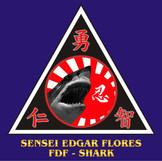 43 SENSEI EDGAR FLORES.jpg