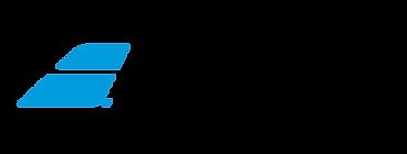 babolat-logo1.png