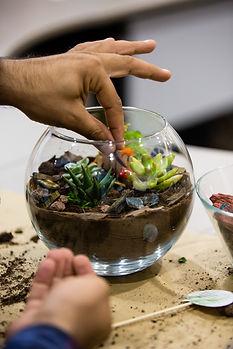Man-planting-cactus-1035478982_838x1257.