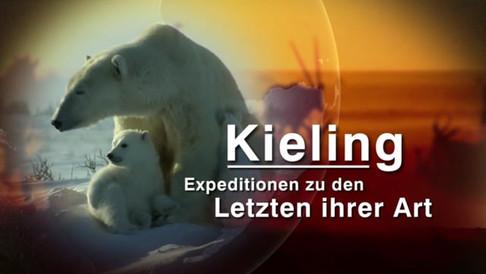 ZDF -Kieling