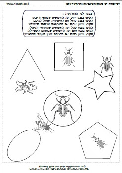חרקים באביב 9(במקום 4).jpg