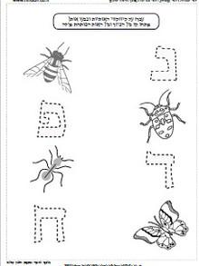 חרקים באביב 5.jpg