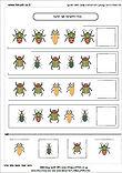 חרקים באביב 4.jpg
