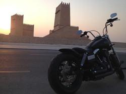 Warren - Doha, Qatar