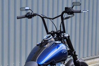 Customised Harley Street Bob