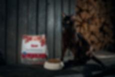 Kana-possu.jpg