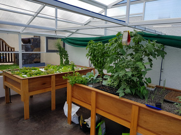 Media and raft Aquaponics system for home